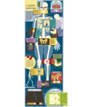 À la découverte du corps humain (coll. livres 100 volets) SARA LYNN CRAMB - Editions Kimane