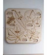 Puzzle feuilles