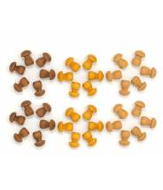 Assortiment de champignons - Grapat