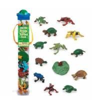 Grenouilles et tortues - Tube Safari LTD